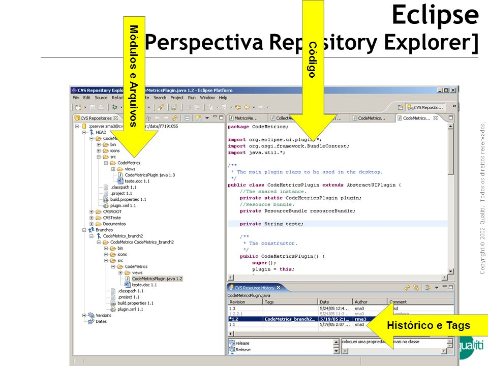 Eclipse [Perspectiva Repository Explorer]